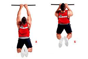 Какие мышцы работают при подтягивании узким хватом