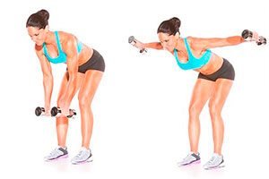 Мышцы спины поверхностные и глубокие